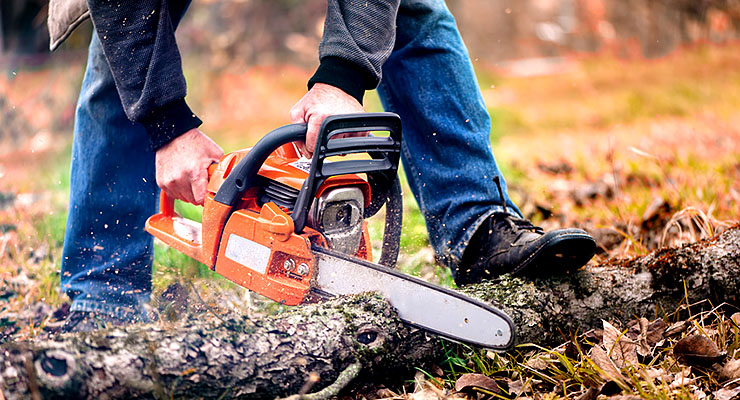 Man cutting fallen tree with a chainsaw.