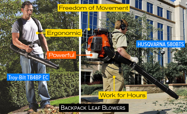 Best backpack blower article.