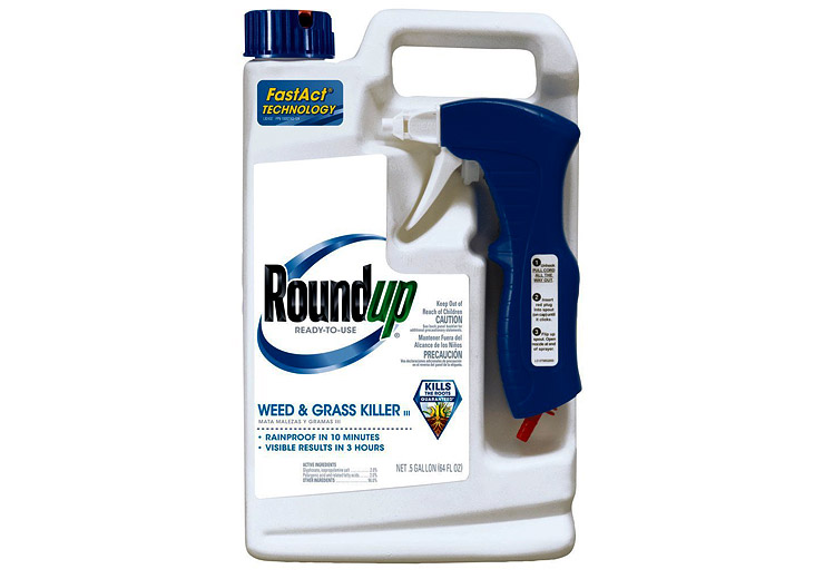Roundup-5003110-Weed-and-Grass-Killer-III-best-weed-killer
