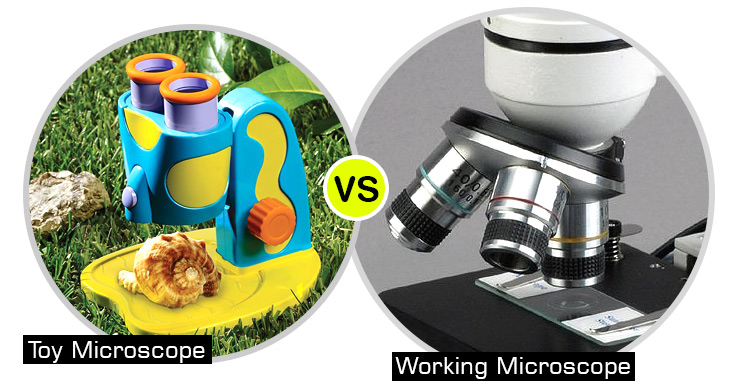 kids-micrscope-vs-real-working-microscope