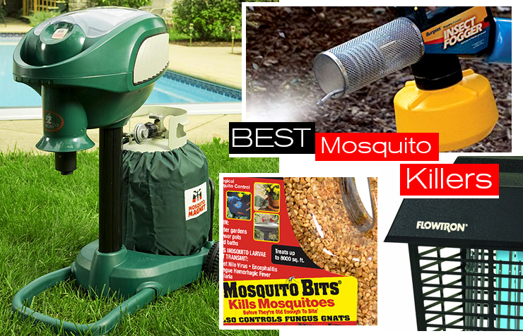 Best Natural Backyard Mosquito Control
