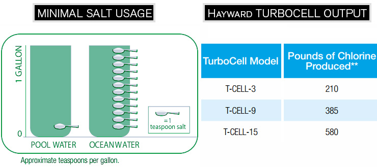 Hayward Turbocells - t-cell replacement diagram.